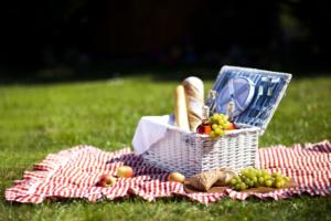 Festival-Style Picknick